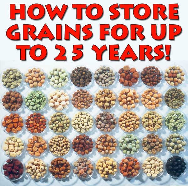 The Survival Guide To Long Term Food Storage Earth
