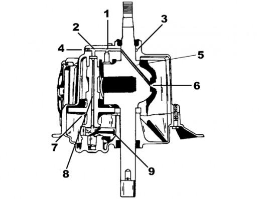 kate gosselin hot: Pic 2 tecumseh engine diagrams