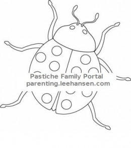 Insects and Bugs Coloring Books & Pages