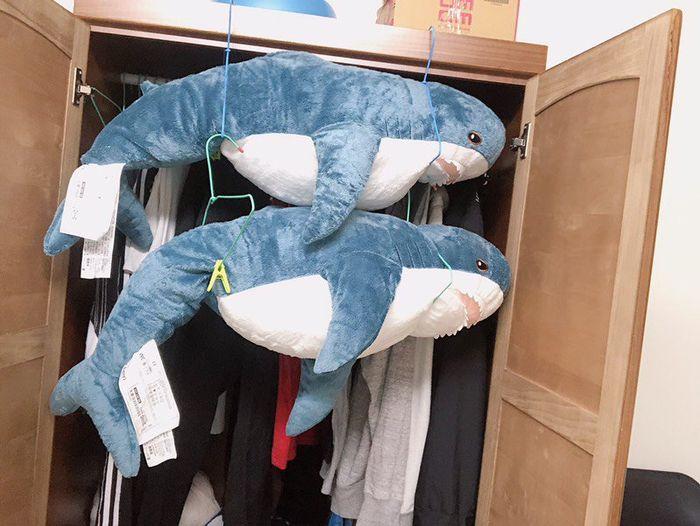 她用洗衣機「洗IKEA鯊魚」下場超爆笑 烘乾後「呆萌小鯊→肥肚肚大叔」網笑翻:更療癒了 - LOOKER 新鮮事