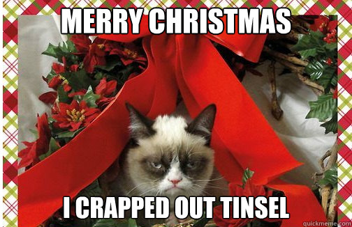 Image result for tinsel memes