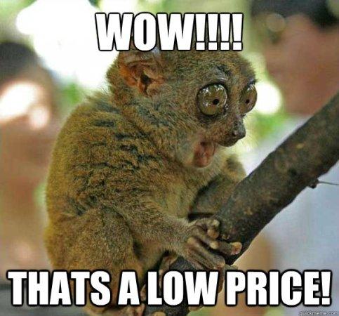 ¡Guau! ¡Ése es un precio bajo!