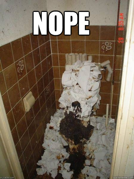 hell no  Toilet  quickmeme