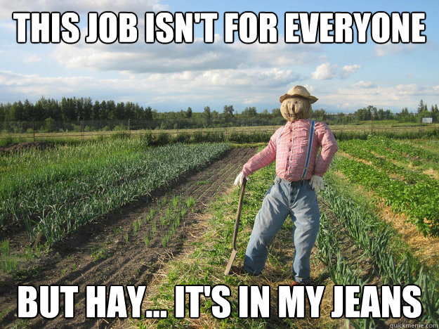 Image result for but hay its in my jeans meme