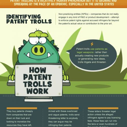 The Impact of Patent Trolls