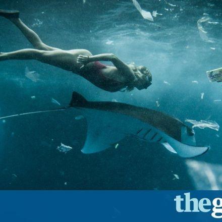 Indonesia pledges $1bn a year to curb ocean waste