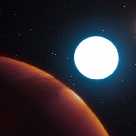 We Found a Planet Twirling Between Three Suns