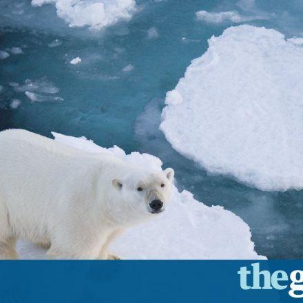 I am an Arctic researcher. Donald Trump is deleting my citations.