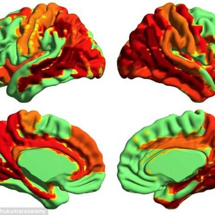 First evidence for higher state of consciousness found
