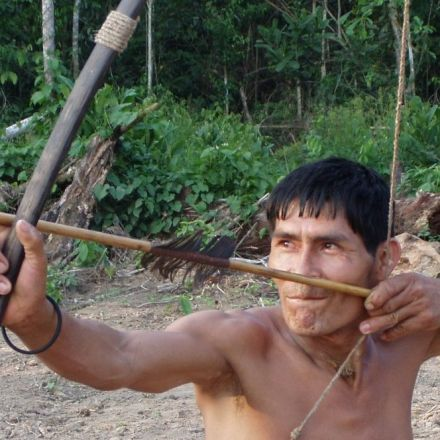 For healthier arteries, do as Amazon rainforest inhabitants do
