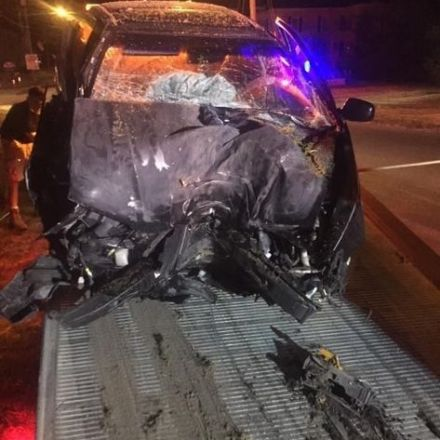 Auburn police: Driver crashes into tree while playing 'Pokemon Go'