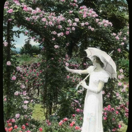 Explore a Growing Archive of American Gardens with a New Smithsonian App