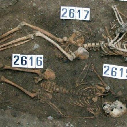 Rare 'Coffin Birth' Found in Black Death Burial Site