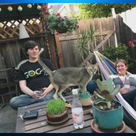 Source: Carbon Monoxide Poisoning Killed Berkeley Couple