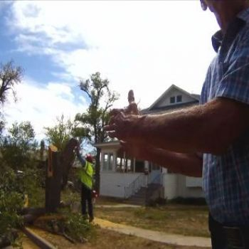 Belen man arrested after fighting to save trees in his neighborhood