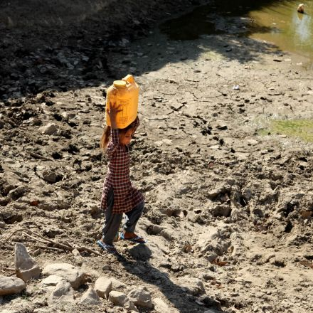 Daytime cooking ban in India as heatwave claims 300 lives