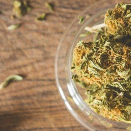 11 Findings From One of the Most Comprehensive Studies Ever on Marijuana's Health Effects