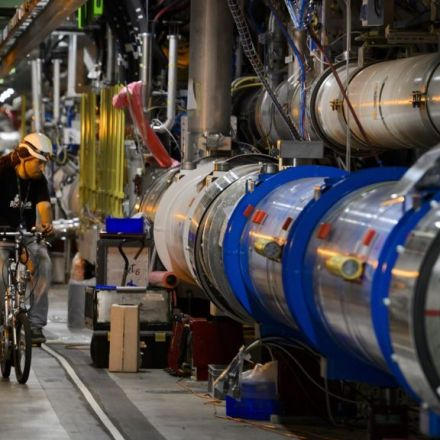 Large Hadron Collider: Weasel causes shutdown - BBC News