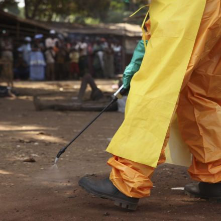 Researchers have found antibodies from an Ebola survivor that stop the virus from spreading