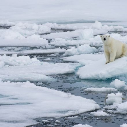 We may already be too late to stop the Arctic's ice completely disappearing