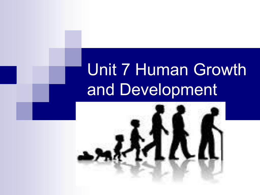 Human Growth Amp Development Ppt