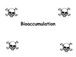 Biomagnification Lab