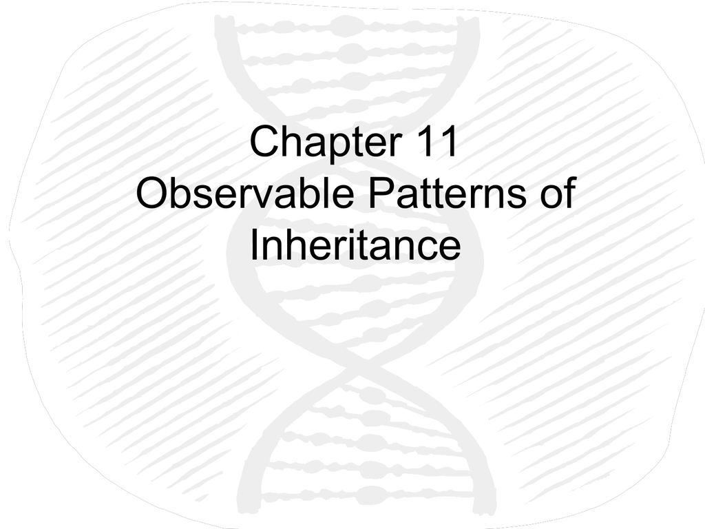 Chapter 11 Observable Patterns of Inheritance