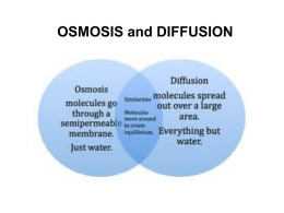 create a venn diagram comparing osmosis and diffusion lighting contactor wiring with timer active transport powerpoint