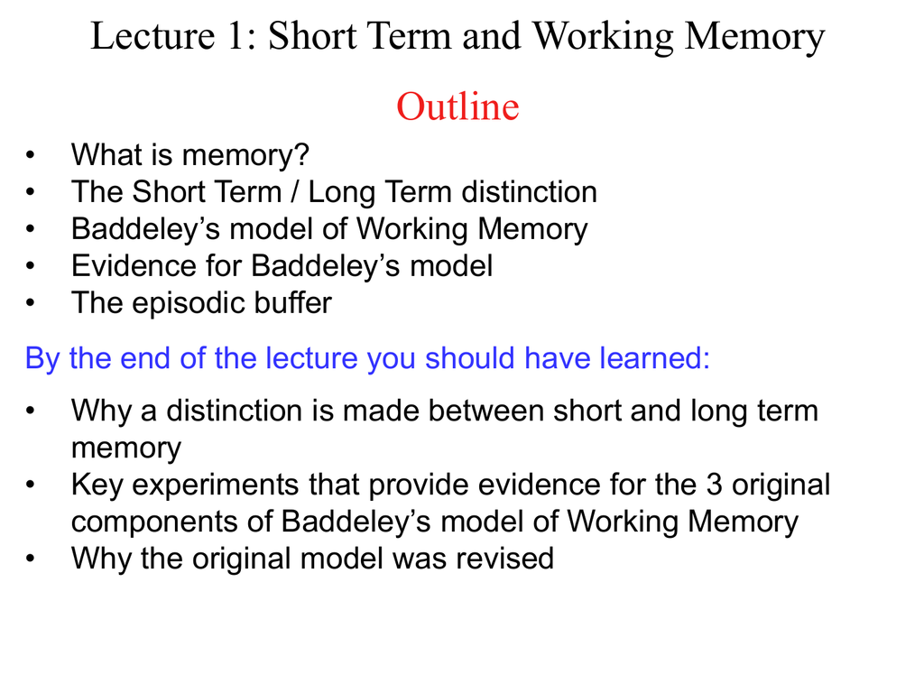 Short Term And Working Memory Outline