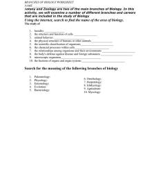 branches of biology worksheet name [ 1024 x 791 Pixel ]