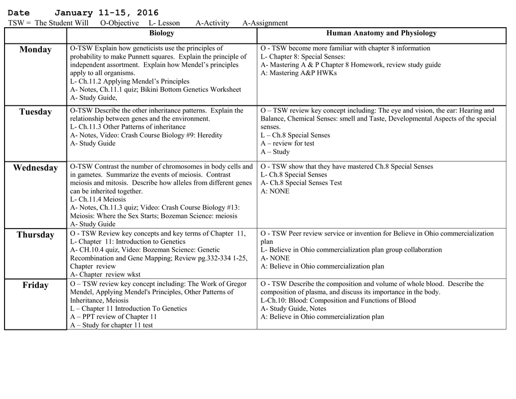 Heredity Crash Course Biology 9 Worksheet