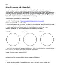 Worksheet. Microscope Lab Worksheet. Hunterhq Free ...