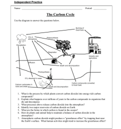 carbon cycle diagram fill in [ 791 x 1024 Pixel ]