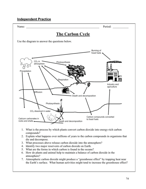 small resolution of carbon cycle diagram fill in