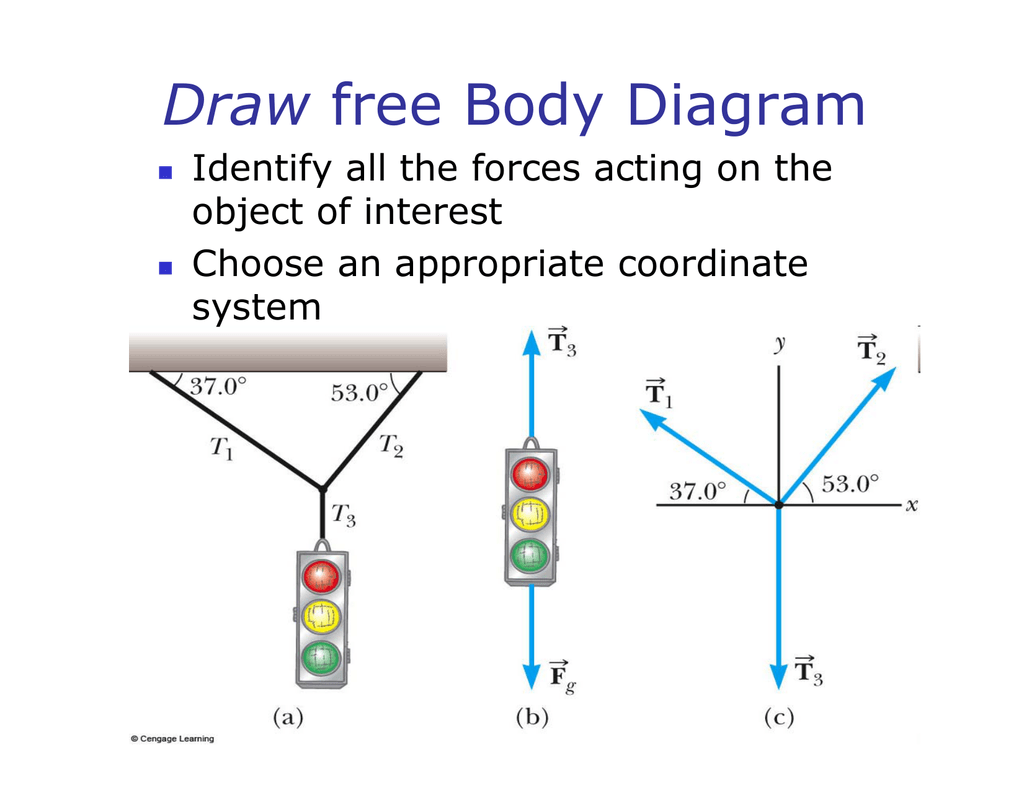 Directions And Planes Of The Body Worksheet