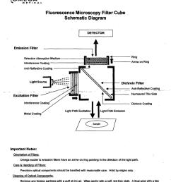 fluorescence diagram [ 786 x 1024 Pixel ]