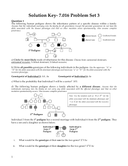 Replication Transcription Translation Worksheet