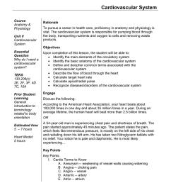 Cardiovascular System [ 1024 x 791 Pixel ]