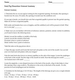 fetal pig dissection worksheet name [ 791 x 1024 Pixel ]