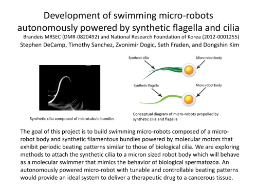 small resolution of development of swimming micro robots autonomously powered by synthetic flagella and cilia