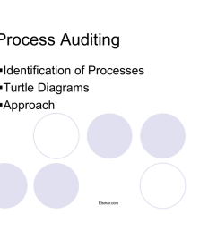 process auditing identification of processes turtle diagrams approach [ 1024 x 791 Pixel ]