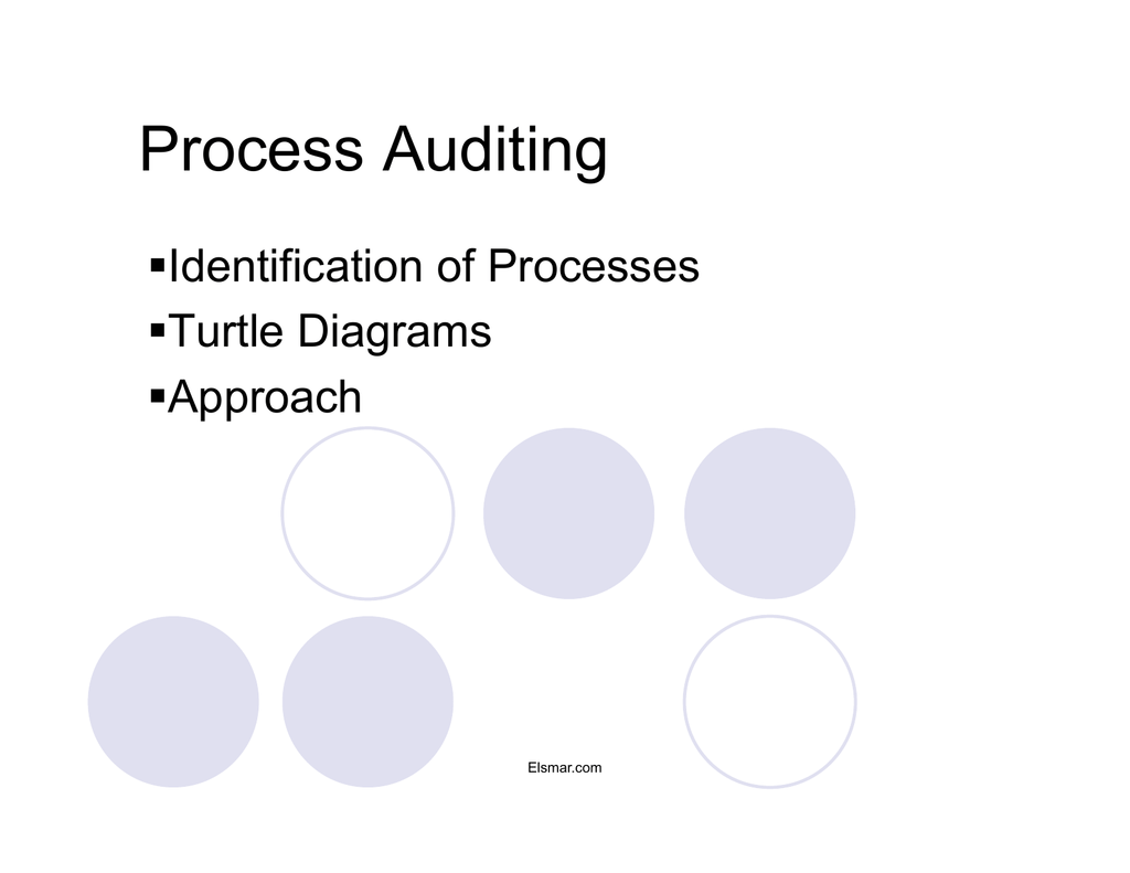 hight resolution of process auditing identification of processes turtle diagrams approach