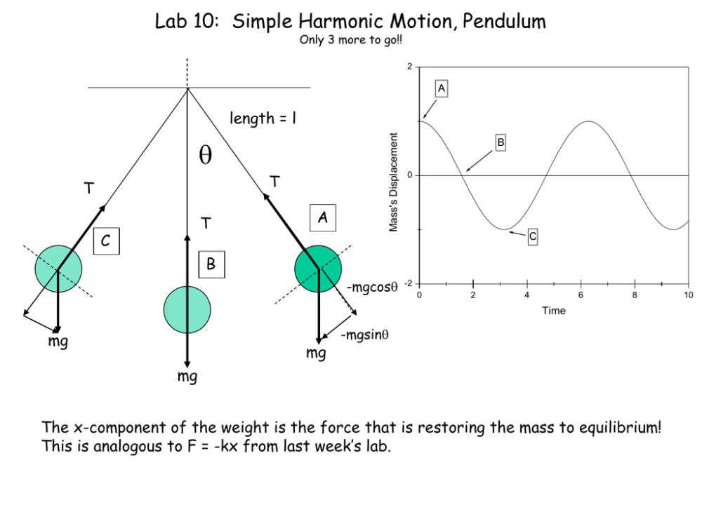 medium resolution of  lab 10 simple harmonic motion pendulum