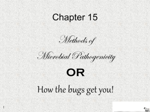 Chapter 15: Microbial Mechanisms of Pathogenecity Below
