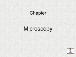 Microbiology Lab Report 5