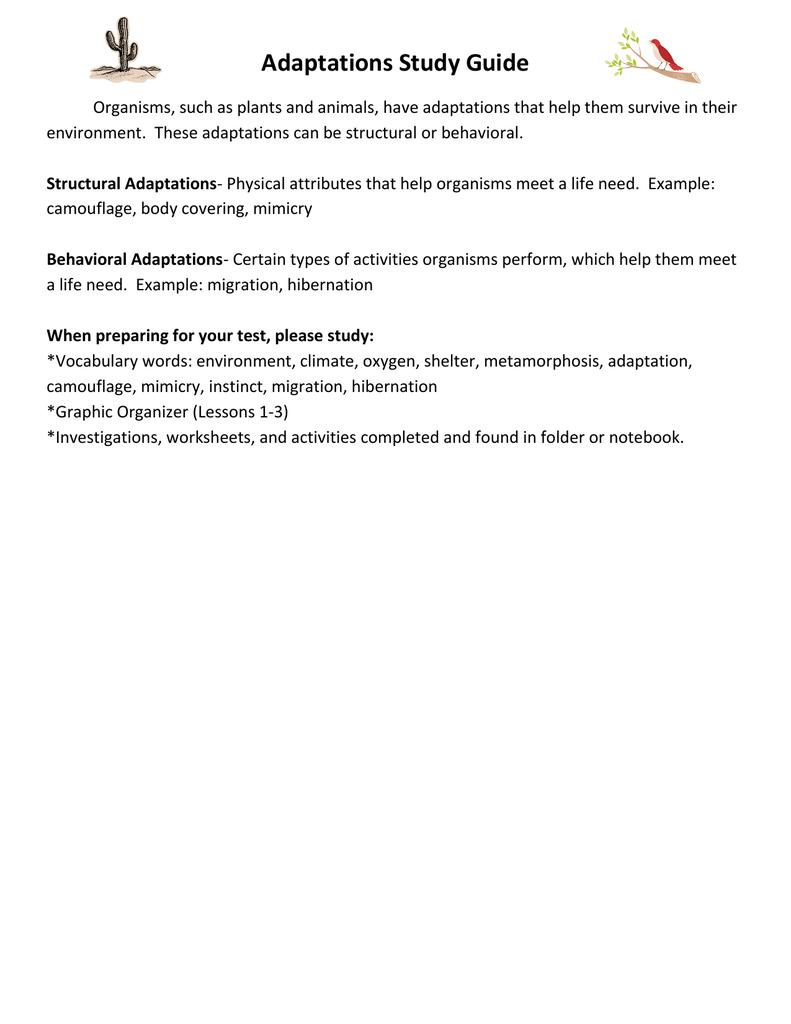 medium resolution of Adaptations Study Guide