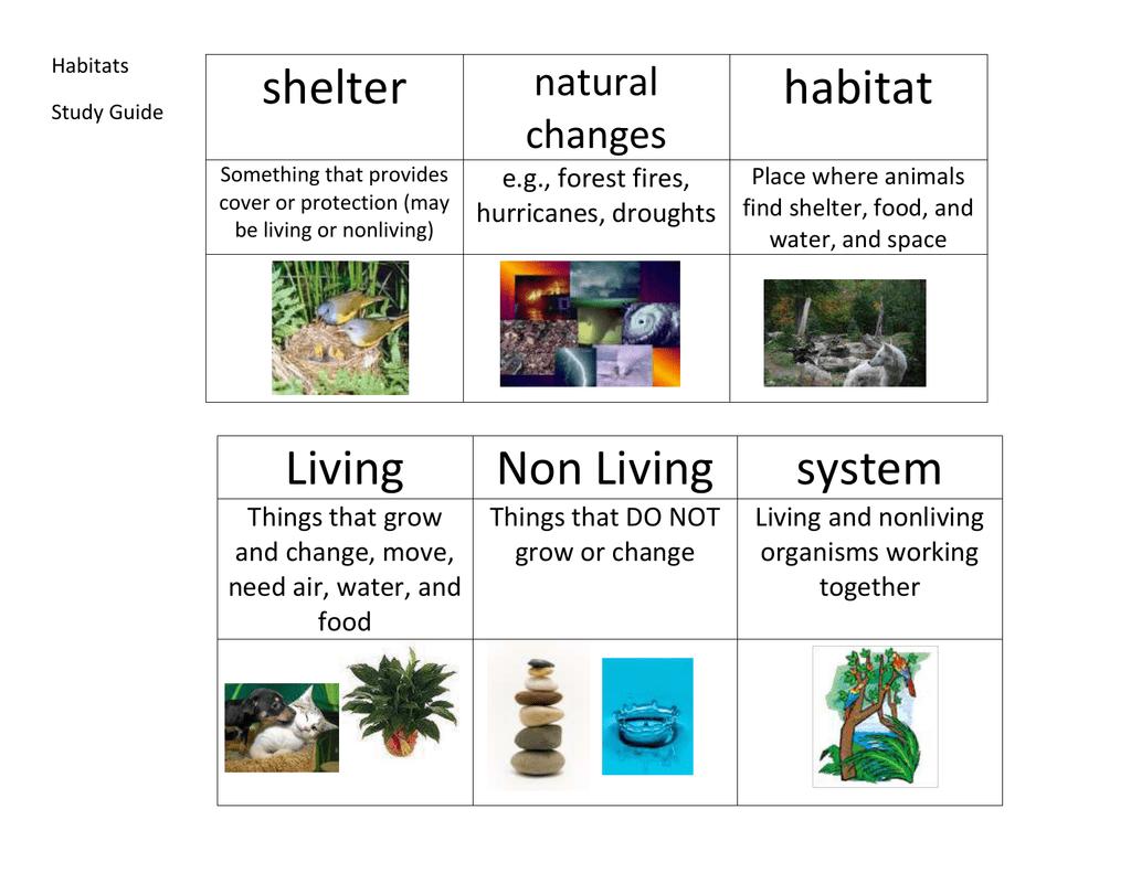Shelter Habitat Living Non Living