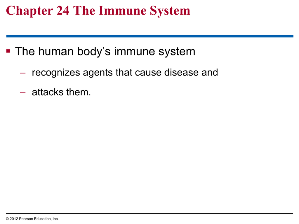 Chapter 24 The Immune System And Disease Worksheet Answers