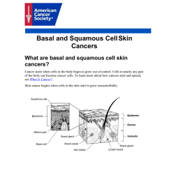 basal and squamous cell skin cancers what are basal and squamous cell skin cancers cancer starts when cells in the body begin to grow out of control  [ 791 x 1024 Pixel ]