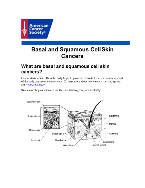 small resolution of basal and squamous cell skin cancers what are basal and squamous cell skin cancers cancer starts when cells in the body begin to grow out of control